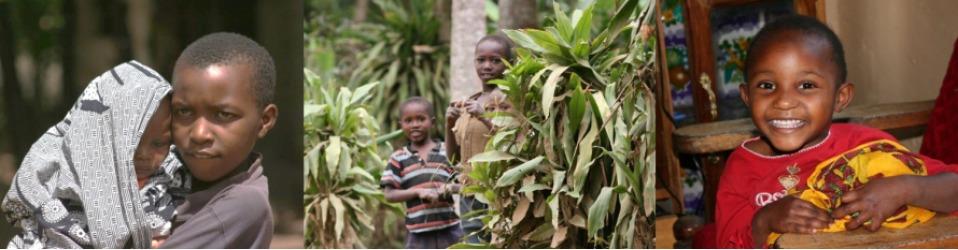 Schulgeld für Tansania e.V.