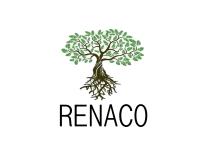 Renaco - Netzwerk für Kinder in Lateinamerika e.V.