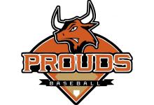 Dithmarschen Prouds - Baseball und Softball e.V.