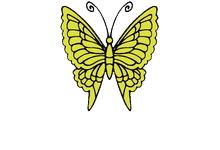 Schmetterlinge e.V. - Schilddrüsenbundesverband